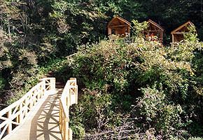 環境プランニング 不動滝