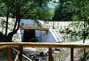 jibuzaka_08